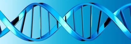 Organismos creados desde cero, Dios ya tiene competencia