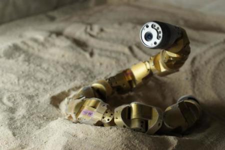 Un robot ayuda a descubrir el mecanismo que permite a las serpientes trepar por dunas