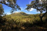Parque Natural Los Alcornocales: entre Tarifa y Jerez