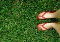 10 sitios útiles para organizar tus vacaciones de verano (II)