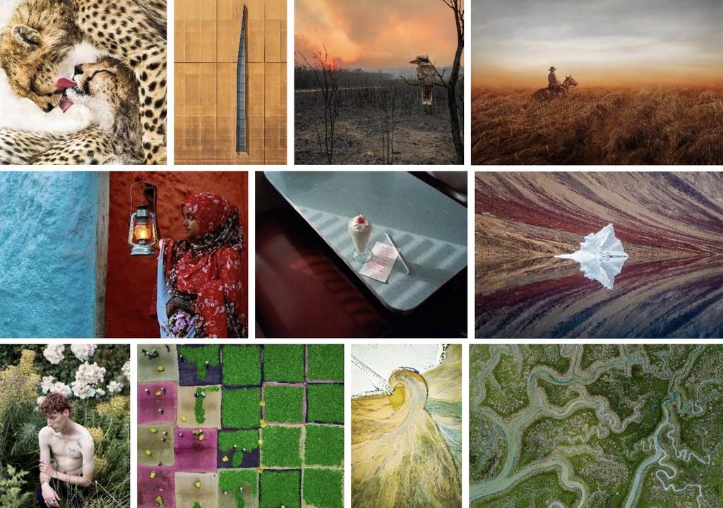 Aquí están las impresionantes fotos ganadoras del concurso abierto de los Sony World Photography Awards 2020