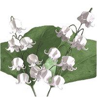 Campanillas y otras florecillas, pero de origami