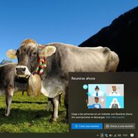 Ya puedes probar las videollamadas con Meet Now en un click si usas Windows 10 May 2019 Update con la última Build
