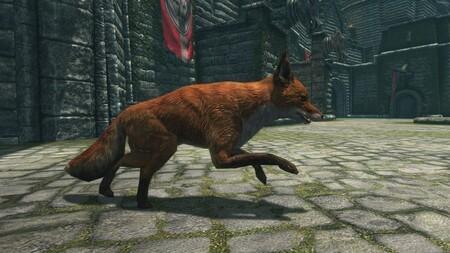Misterio resuelto en Skyrim: un desarrollador derrumba el mito de los zorros que nos guiaban hacia tesoros