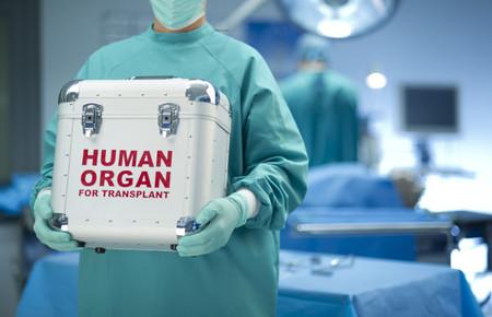 Life Pocket es la primera red social de donación de órganos