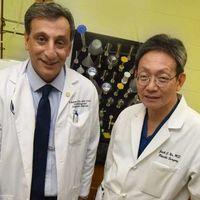 La vibración del cuerpo para producir un mayor porcentaje de macrófagos y prevenir la diabetes