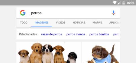 Google renueva su buscador de imágenes en dispositivos móviles