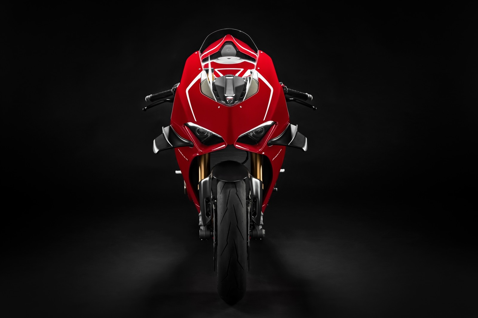 Foto de Ducati Panigale V4 R 2019 (51/87)