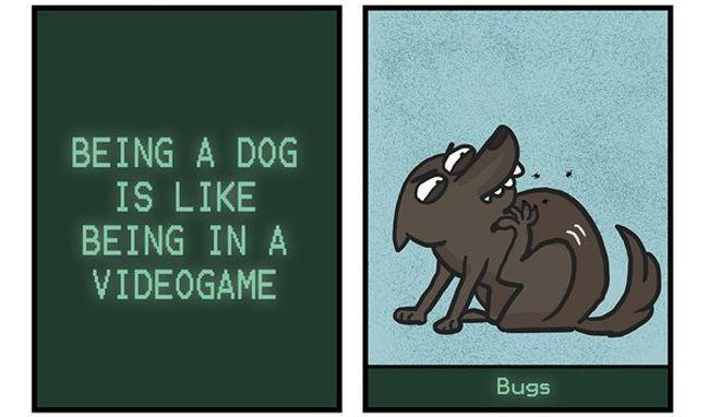 ¡Qué vida más perra!