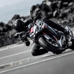 Foto 18 de 20 de la galería kawasaki-z800-y-z1000-sugomi-special-edition en Motorpasion Moto