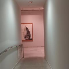 Foto 17 de 44 de la galería xiaomi-mi-8-pro en Xataka
