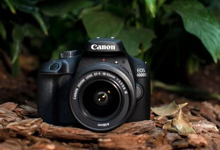 Canon EOS 4000D, Nikon D3400, Panasonic Lumix GX800 y más cámaras, objetivos y accesorios en oferta: Llega Cazando Gangas