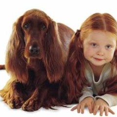 Foto 3 de 4 de la galería perros-y-ninos en Bebés y más