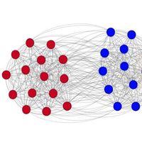 Las ideas políticas extremas evolucionan debido a la necesidad de conectar con los demás