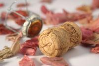 Esta Nochevieja, descorcha la botella de cava o champán de la forma más elegante
