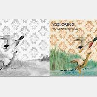 En esta web consigues decenas de libros para colorear gratuitos de más de 100 instituciones culturales de todo el mundo