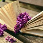 11 cuentas de Twitter para poner poesía en tu día a día