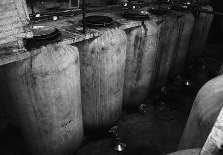 Depósitos de hormigón para la fermentación del vino