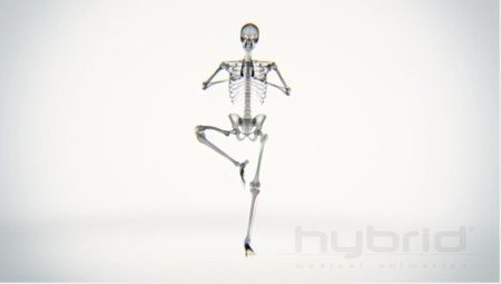El Yoga visto a través de rayos-X
