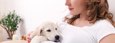 ¿Puede tu perro saber que estás embarazada? Qué dice la ciencia