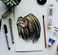 V de vulture