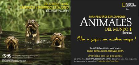 Deja que tus hijos interactúen con animales reales en los talleres de National Geographic