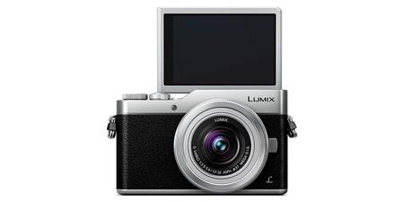 Panasonic Lumix Dc Gx800 2