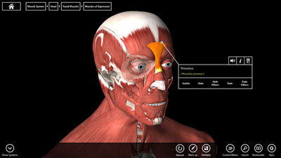 Essential Anatomy 3, modelo del cuerpo humano en Windows 8