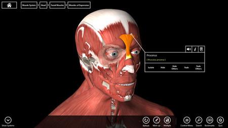 Essential Anatomy 3, modelo del cuerpo humano en Windows 8