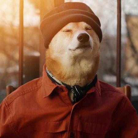 En El Nuevo Ano Chino Dedicado Al Perro Recordamos Los Mejores Looks De Nuestro Favorito Mensweardog 07