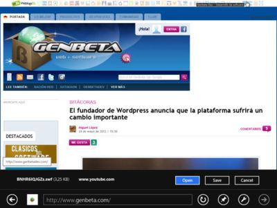 Flash podría estar integrado en Internet Explorer 10