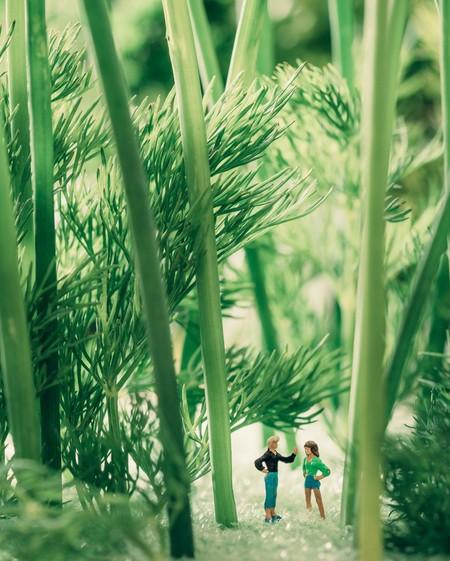 No Creeras Paisajes En Miniatura Creo Fotografa Usando Comida