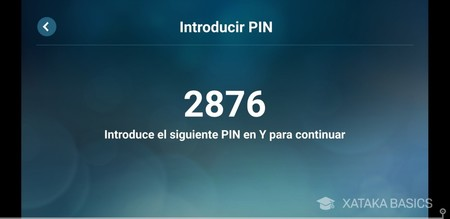 Introducir Pin