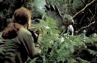 Steven Spielberg: 'El mundo perdido: Parque jurásico II', lo que pudo ser y no fue
