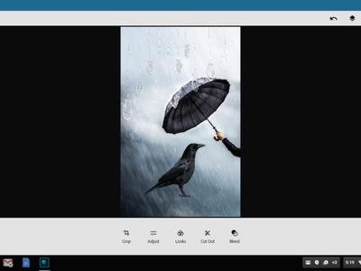 Adobe optimiza sus aplicaciones de Android para que funcionen en los Chromebooks