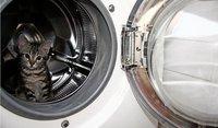Cuidado con llenar las lavadoras más de la cuenta