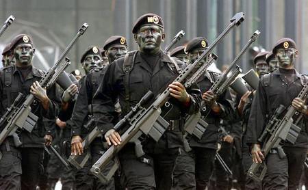 Fuerzas Especiales Michoacan