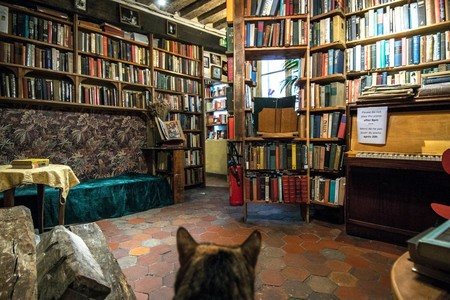 Libreria Shakespeare Company Nina Kinkade Gogny