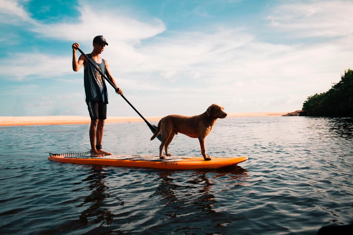 Paddle-surf: las mejores ofertas para hacerte con tu equipo completo en estas rebajas