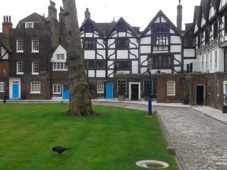 Cuervo Torre Londres