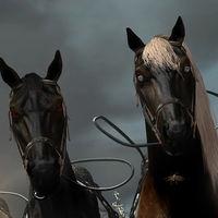 Red Dead Online genera el desconcierto entre sus jugadores al aparecer cientos de caballos muertos en puntos del mapa