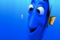 ¿Realmente la memoria de los peces sólo dura unos pocos segundos?