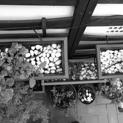Foto 31 de 94 de la galería fotos-tomadas-con-el-e-meizu-pro-7 en Xataka