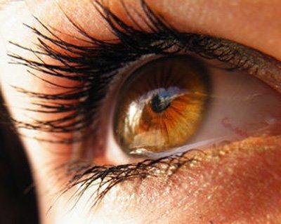 De Qué Colores Puede Tener Los Ojos Un Ser Humano