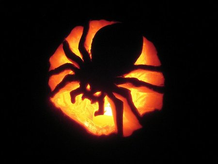 Arañas que vigilan todos tus movimientos