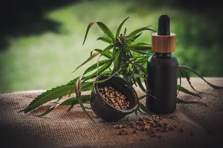 De Musico De Hip Hop A Tener Un Imperio Empresarial Basado En Cannabis Esta Es La Increible Historia De Snoop Dogg 4