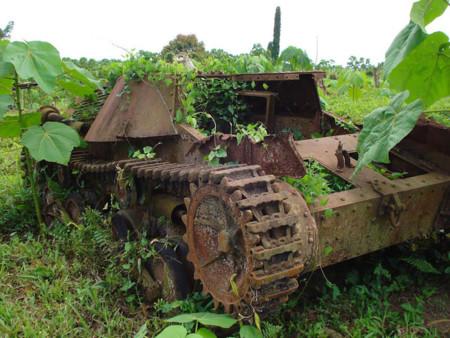 Tanques Naturaleza 2