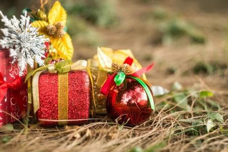 Las ocho actividades navideñas que no debes dejar de hacer