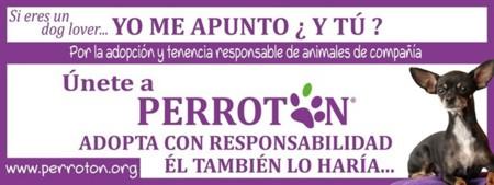 Perrotón 2016: únete a la carrera solidaria por la adopción responsable