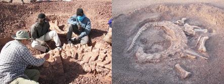 El dinosaurio desconocido de Níger